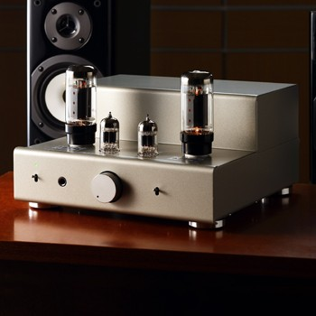 6L6GC SINGLE TUBE AMP KIT
